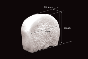Tricortical Cancellous Wedge